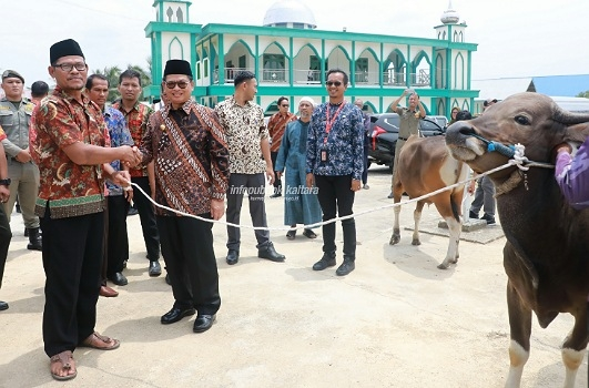 Gubernur Kaltara Dr H Irianto Lambrie menyerahkan sapi kurban kepada takmir masjid al Muhajirin Desa Panca Agung, Kecamatan Tanjung Palas Utara, Kamis (8/8). Humas pemprov Kaltara.