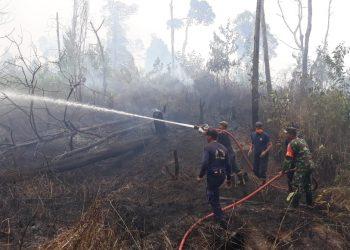 Babinsa Koramil 0907/04 Tarut Serda Ilyas Ikut Membantu memadamkan api di Hutan Wahana Persemaian RT.3 Kel.Juata kerikil,Poto:Adit