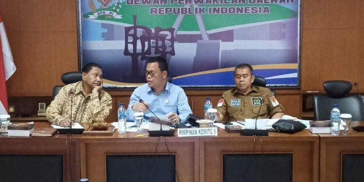 Wakil Ketua Komite II DPD RI Hasan Basri. Foto : DPD RI