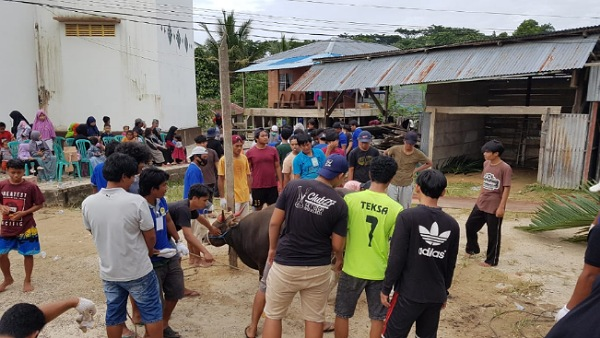 PAC LDII Karang Harapan  memotong 19 ekor sapi di hari raya Idul Adha 1441 H, Jumat (31/7). Foto : Istimewa
