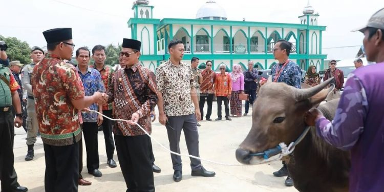 Gubernur Kaltara, Dr H Irianto Lambrie saat menyerahkan sapi kurban kepada pengurus Masjid Al-Muhajirin, Kecamatan Tanjung Palas Utara, Bulungan pada Agustus 2019. Foto : Humas Provinsi Kaltara