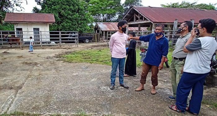 Kadis Pangan Tarakan Elang Buana Saat Meninjau Pemotongan Hewan Kurban di RPH. Foto: fokusborneo.com
