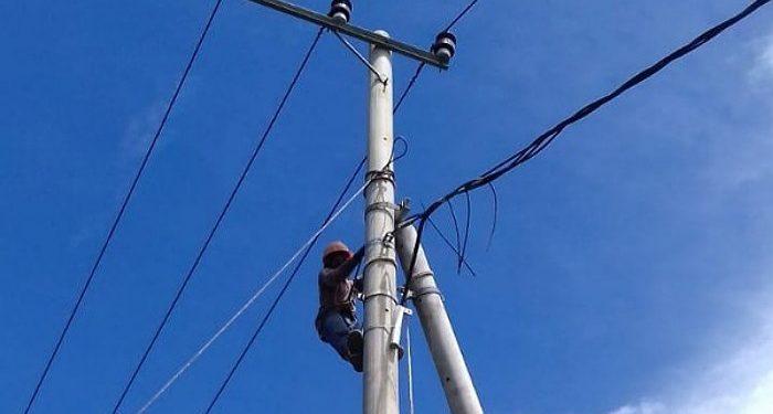Petugas PLN Sedang Memanjat Tiang Kabel Listrik. Foto:Istimewa