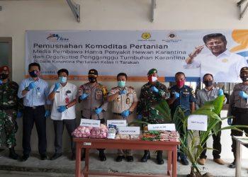 Komoditas Pertanian dan Hewan Ilegal dari Malaysia Dimusnahkan BKP Tarakan. Foto: Istimewa