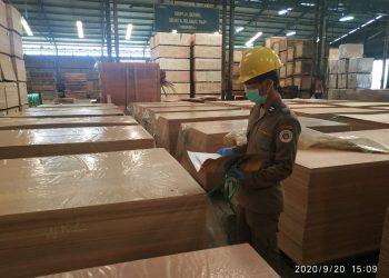 Petugas Karantina Pertanian Tarakan melakukan pengawasan fumigasi terhadap kayu olahan yang akan diekspor ke negara India. Foto : Istimewa