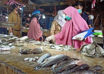 Petugas BKIPM Tarakan Mengambil Sampel Ikan di Pasar Ikan Beringin. foto: fokusborneo.com