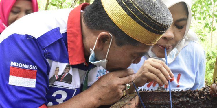 Calon Gubernur Kaltara  No urut 3 Zainall Arifin Paliwang bersama istri saat meminum madu langsung dari sarang lebah di Kabupaten Bulungan. Foto : TMC ZIYAP