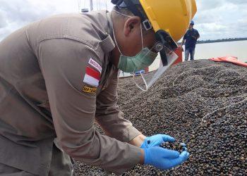 Petugas BKP Tarakan Lakukan Pemeriksaan Palm Kernel Sebelum di Ekspor ke Malaysia. Foto: Istimewa/BKP