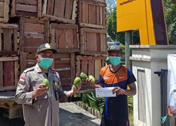 Petugas BKP Tarakan Serahkan Sertifikat Ekspor Buah ke Malaysia. Foto: Ist