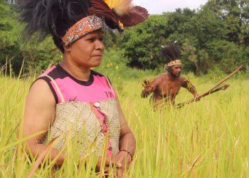 KEARIFAN LOKAL: Pakaian Tradisional Suku Yeinan Papua. Foto: Pen Yonif 611/Awang Long