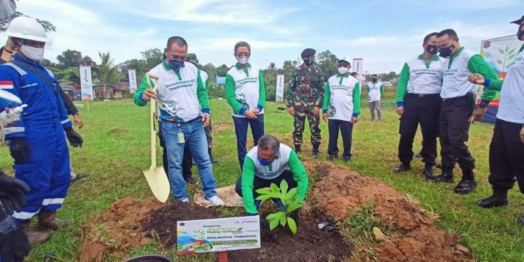 Hari Lingkungan Hidup: Simbolis Walikota Tarakan Tanam Pohon Terap Bersama PT Pertamina EP Tarakan Field. Foto: fokusborneo.com